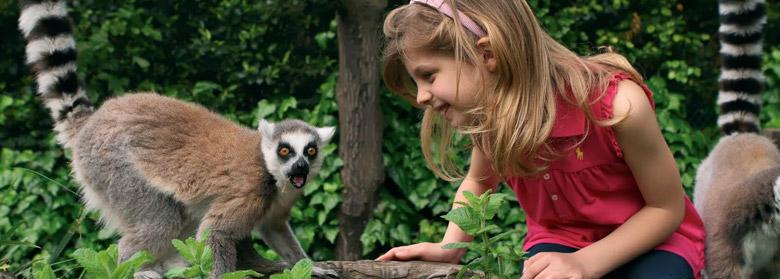 Giardino Zoologico Pistoia - Zoo
